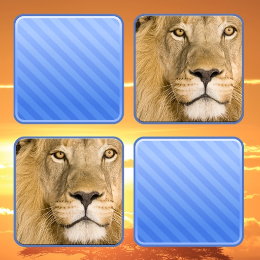 Memo Game Wild Animals Photo