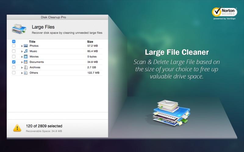 Disk Cleanup Pro - Boost Space скриншот программы 5
