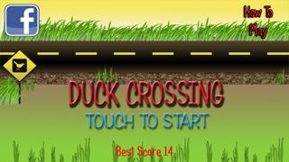 Duck Crossing screenshot four