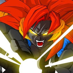 Dragon X Fighter : Saiyan Warrior