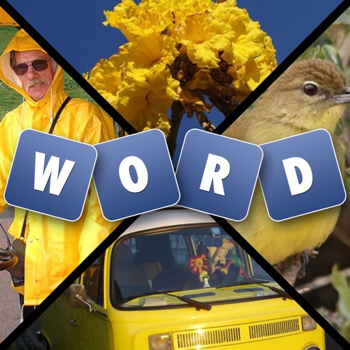 Words and Pics - Guess What's hidden Behind The Four Photos
