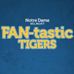 FAN-tastic Tigers