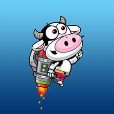Activities of Math Cow