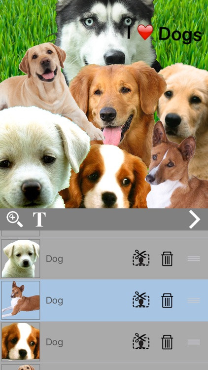ChopShop - Image and Photo Editor