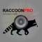 App Icon for REAL Raccoon Calls and Raccoon Sounds for Raccoon Hunting App in United States IOS App Store