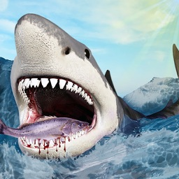 Furious Shark Revolution : Play this Shark Life Simulator to feed and hunt