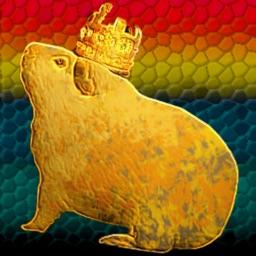 Guinea King