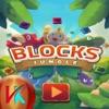 Animal Blocks Blast Puzzle