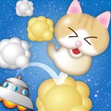Activities of KittenUp