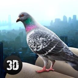 City Pigeon Simulator 3D Full