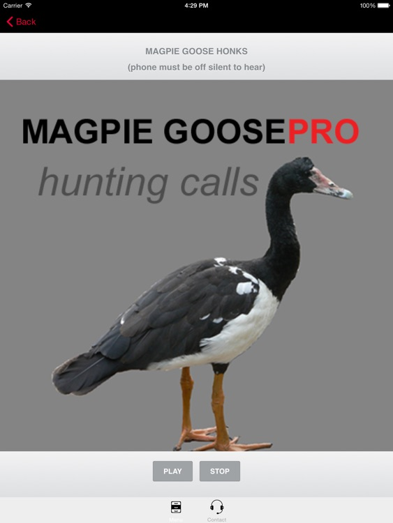 REAL Magpie Goose Calls - Hunting Calls for Magpie Geese -- (ad free) BLUETOOTH COMPATIBLE