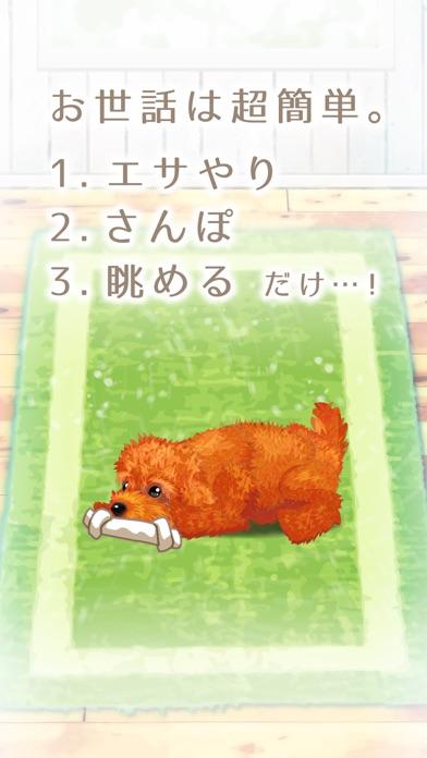 癒しの子犬育成ゲーム〜トイプードル編〜(無料)紹介画像2