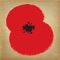Somme 100 with Dan Snow and The Royal British Legion brings to life the events surrounding the Battle of the Somme, the bloodiest battle of the First World War, and the experiences of the soldiers who fought in it