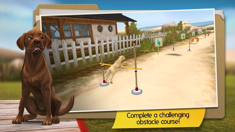 DogHotel: My Dog Boarding Kennel screenshot-4