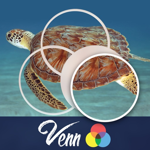 Venn Turtles: Overlapping Jigsaw Puzzles