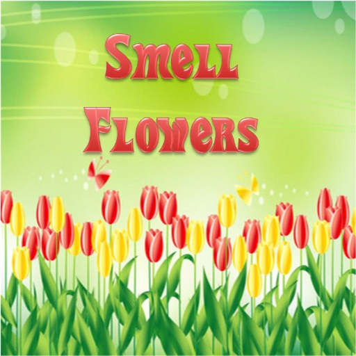 Smell Flowers icon