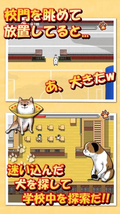 校庭に犬wスクリーンショット3