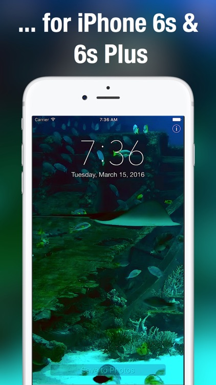 Aquarium Live Wallpapers for Lock Screen: Animated backgrounds for iPhone screenshot-4