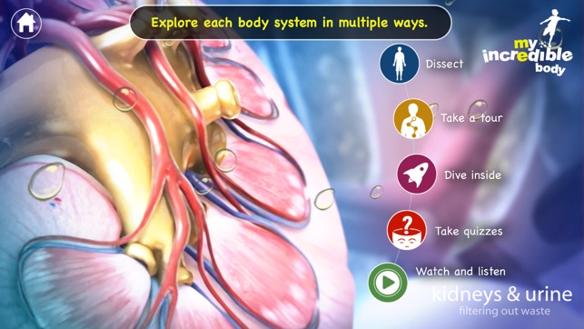 My Incredible Body - Guide to Learn About the Human Body for Children -  Educational Science App with Anatomy for Kids