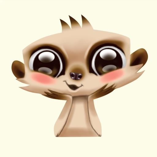 Miko the Meerkat