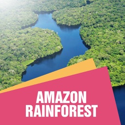 Amazon Rain Forest Travel Guide
