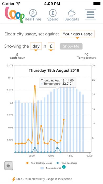 Loop Energy Management screenshot two