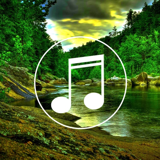 Jungle Sounds Relaxing Nature & Forest Ambience