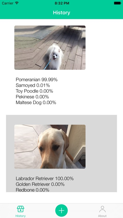 Dog Breeds Recognition by AI