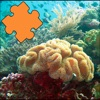 Coral Reefs Jigsaw Puzzles