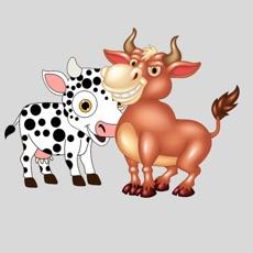 Activities of Cow Taurus