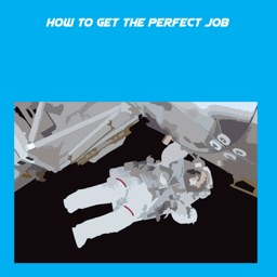 How To Get The Perfect Job+
