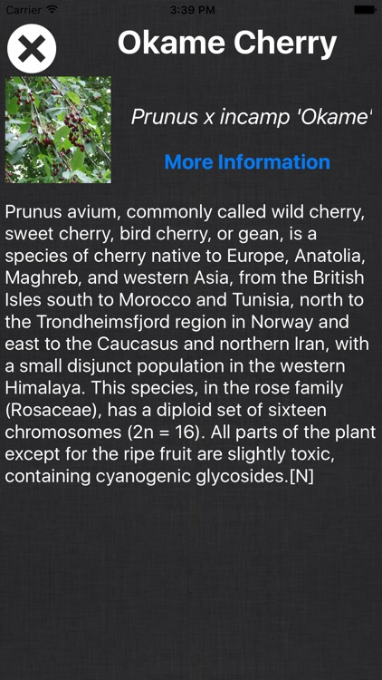 Tree Book - Information Of A - Z Tree Species