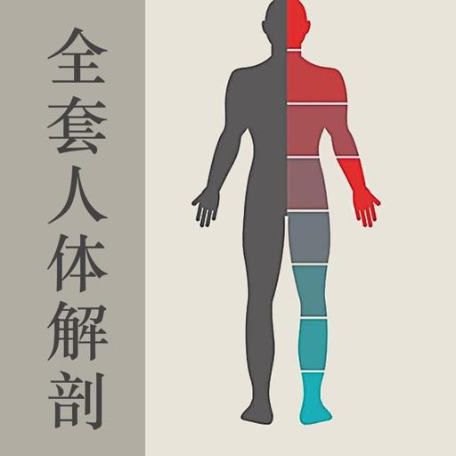 全套人体解剖知识大全