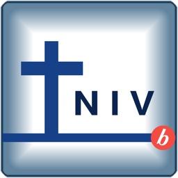 Bibooki NIV Bible