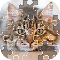 Sliding Block Game - Slide Puzzle & Photos