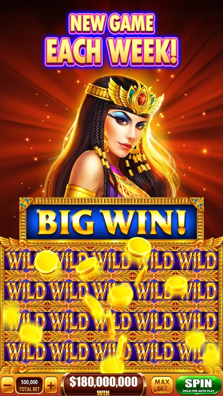 Big Win Casino App