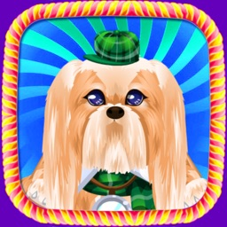 Puppy Pet Cleanor:Princess learning to be a doctor to take care of the babyFree Games