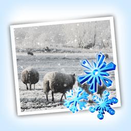 Ícone do app Snow Daze