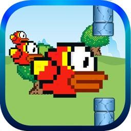 Bird Smash Press Free Game