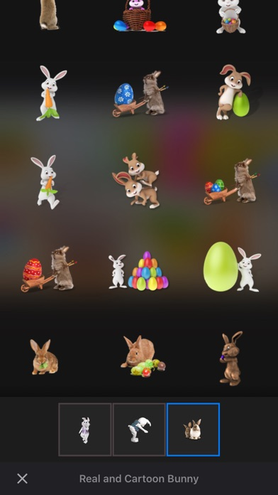 Catch the Easter Bunny screenshot 5