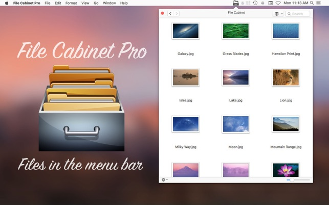 File Cabinet Pro Screenshot