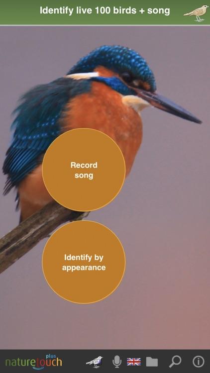 Identify live bird songs screenshot-0