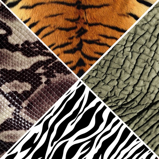 Animals Skin Wallpapers - Animal Print Pictures HD