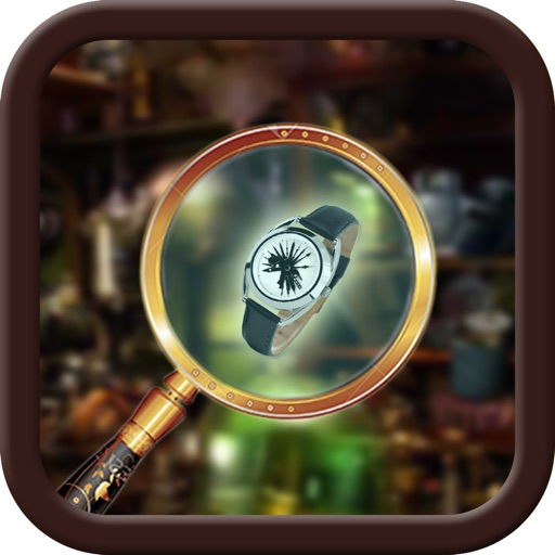 Hidden Object The Time Traveler