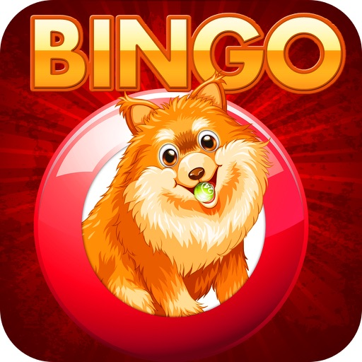 Doge Bingo - Free Bingo Game
