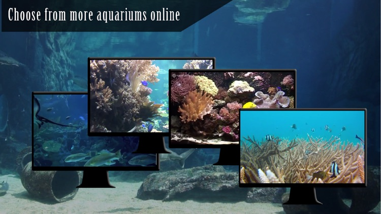 Ocean Aquarium HD screenshot-2