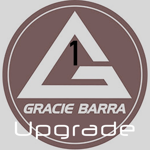 Gracie Barra BBJ: Weeks 1-4