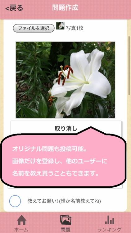 花の名前ダウト screenshot-3