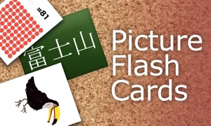 Flash Card (Dots Card, Flag, Color, Kanji, Animal)