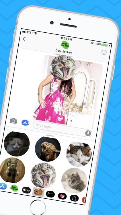 Cat Sticker App